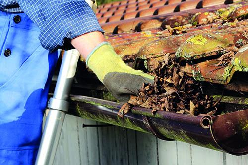 Servisni pregledi streh